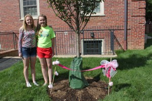 Madeira Class of 2017 Tree Dedication